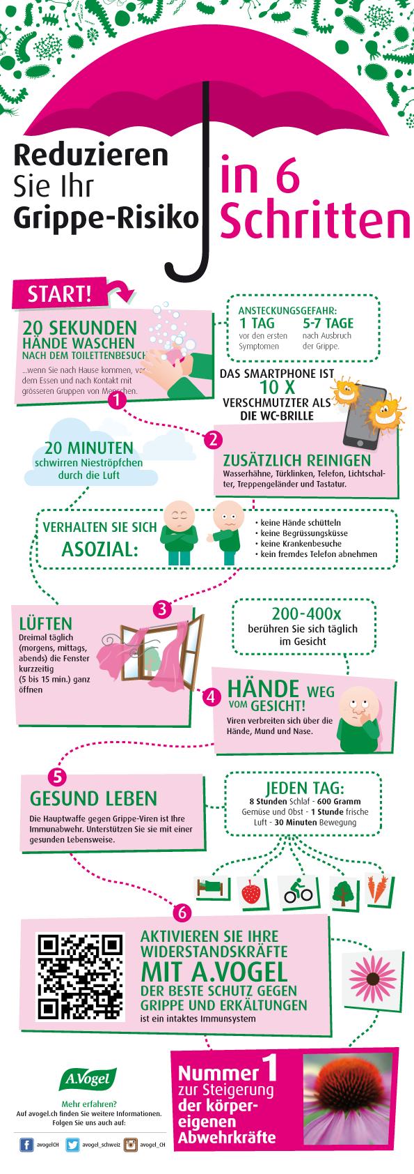 Grippe Vorbeugen Infografik
